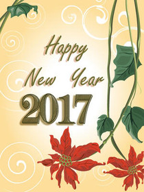 New Year 2017 10